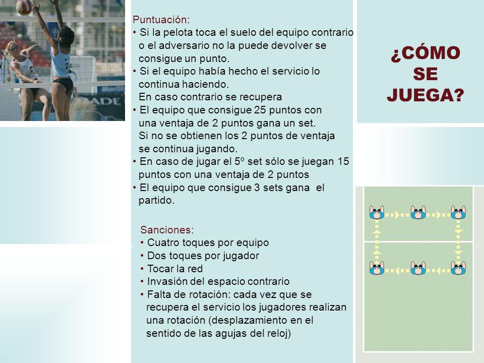 SABÍAS QUE… El voleibol para niños de hasta 12 años se juega en un campo más pequeño y con 4 jugadores.