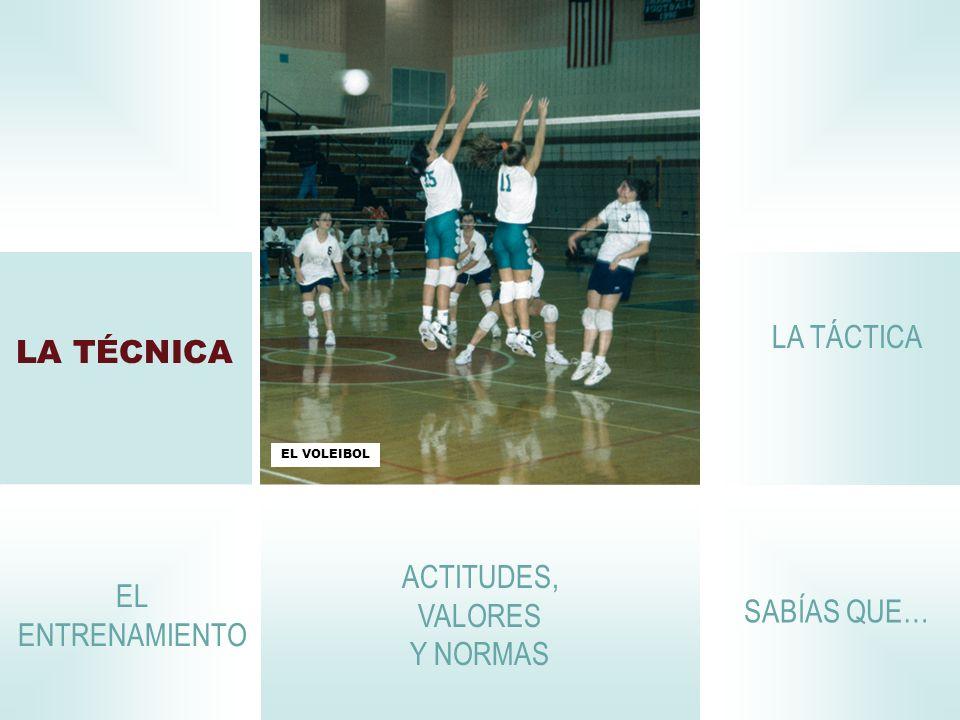 LA TÉCNICA La realización correcta de los gestos propios del voleibol es la técnica.