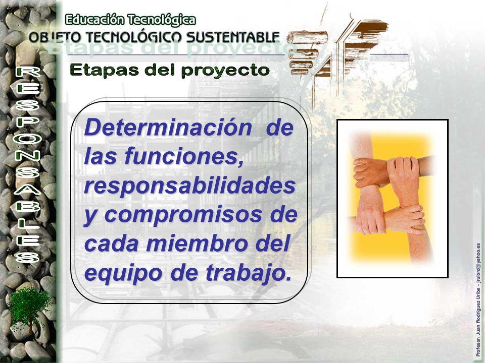 Determinación de las funciones, responsabilidades y compromisos de cada miembro del equipo de trabajo.