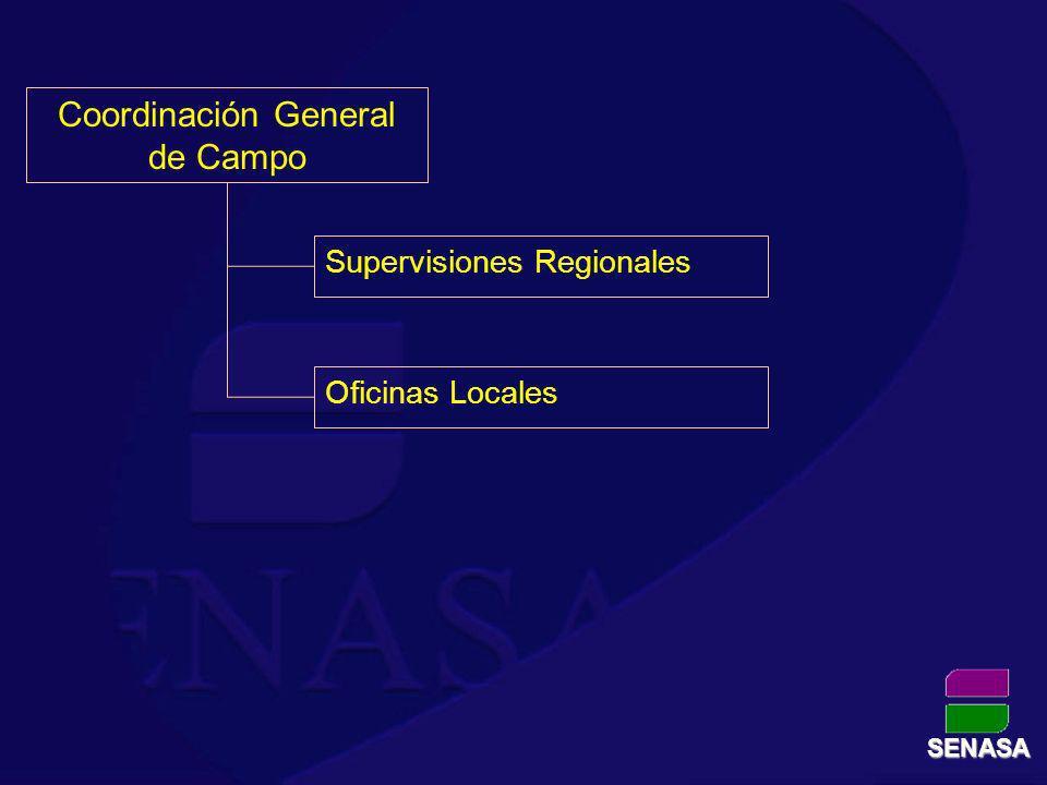 Supervisiones Regionales Oficinas Locales Coordinación General de Campo SENASA