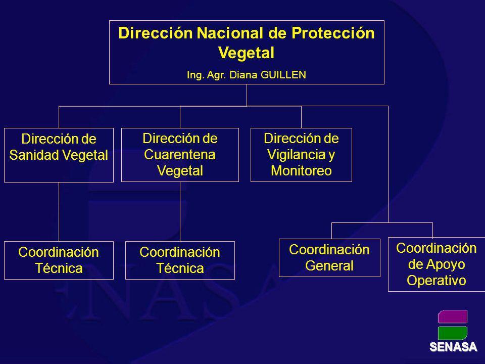 Dirección Nacional de Protección Vegetal Ing. Agr. Diana GUILLEN Dirección de Sanidad Vegetal Dirección de Vigilancia y Monitoreo Dirección de Cuarent