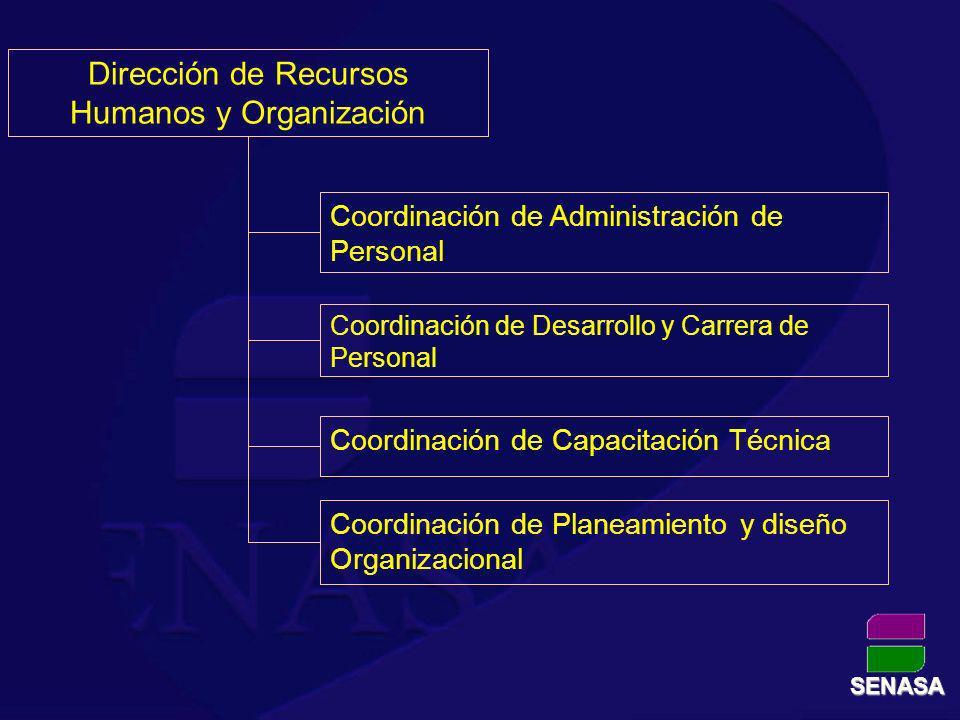 Coordinación de Administración de Personal Coordinación de Desarrollo y Carrera de Personal Coordinación de Capacitación Técnica Dirección de Recursos