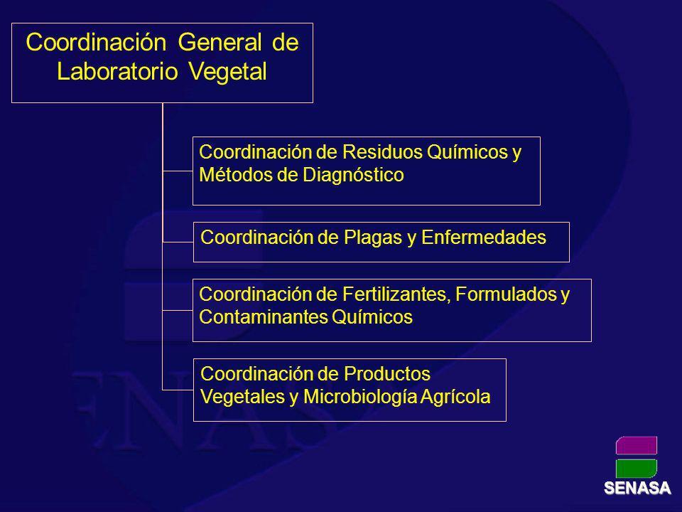 Coordinación General de Laboratorio Vegetal Coordinación de Residuos Químicos y Métodos de Diagnóstico Coordinación de Plagas y Enfermedades Coordinac