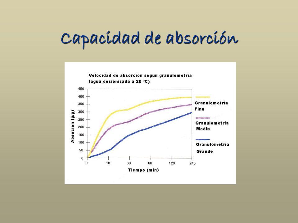 Capacidad de absorción
