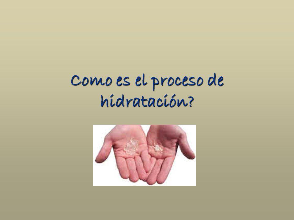 Como es el proceso de hidratación?