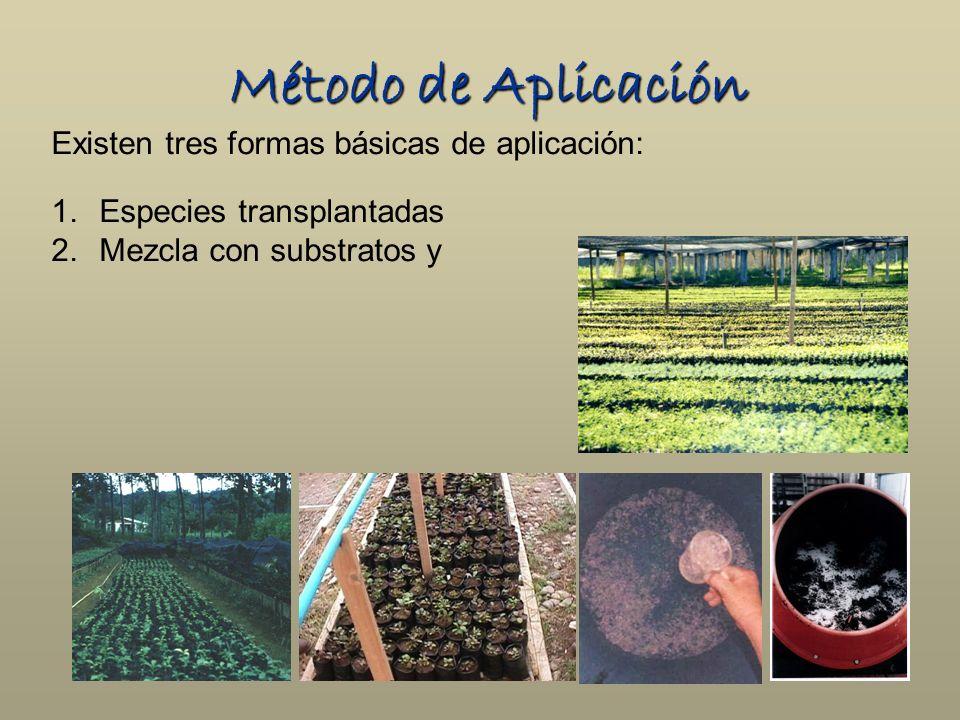 Método de Aplicación Existen tres formas básicas de aplicación: 1.Especies transplantadas 2.Mezcla con substratos y