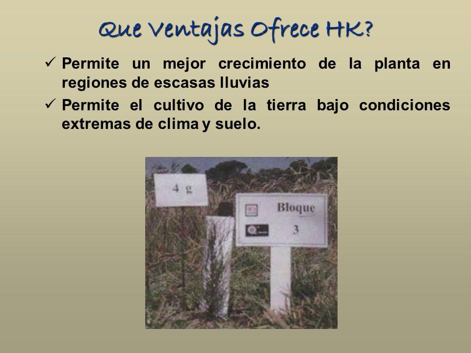 Que Ventajas Ofrece HK? Permite un mejor crecimiento de la planta en regiones de escasas lluvias Permite el cultivo de la tierra bajo condiciones extr