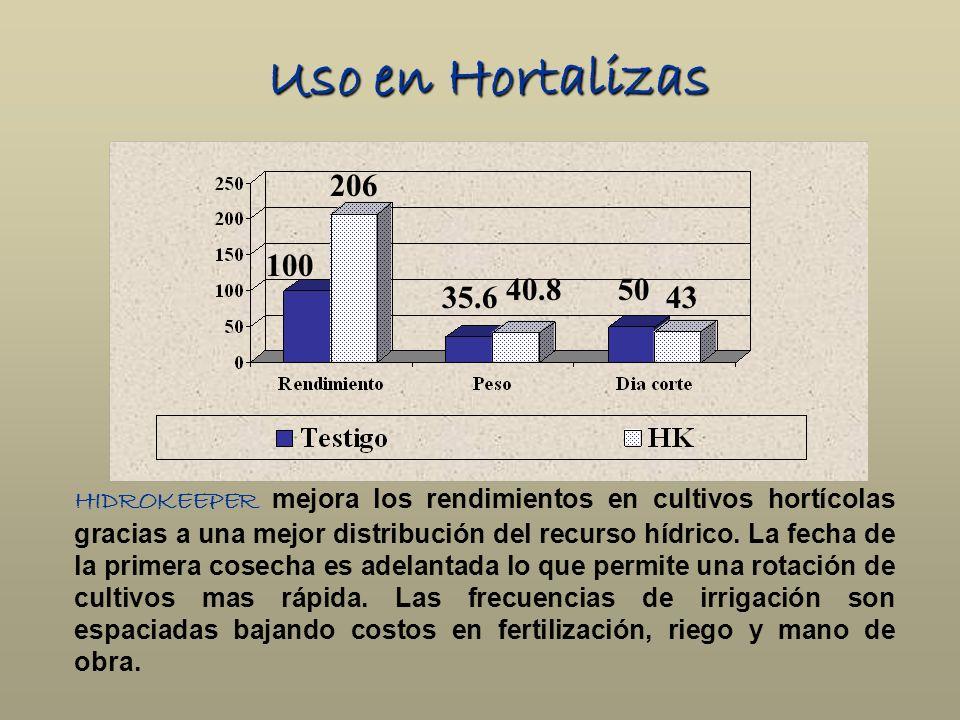 Uso en Hortalizas HIDROKEEPER mejora los rendimientos en cultivos hortícolas gracias a una mejor distribución del recurso hídrico. La fecha de la prim