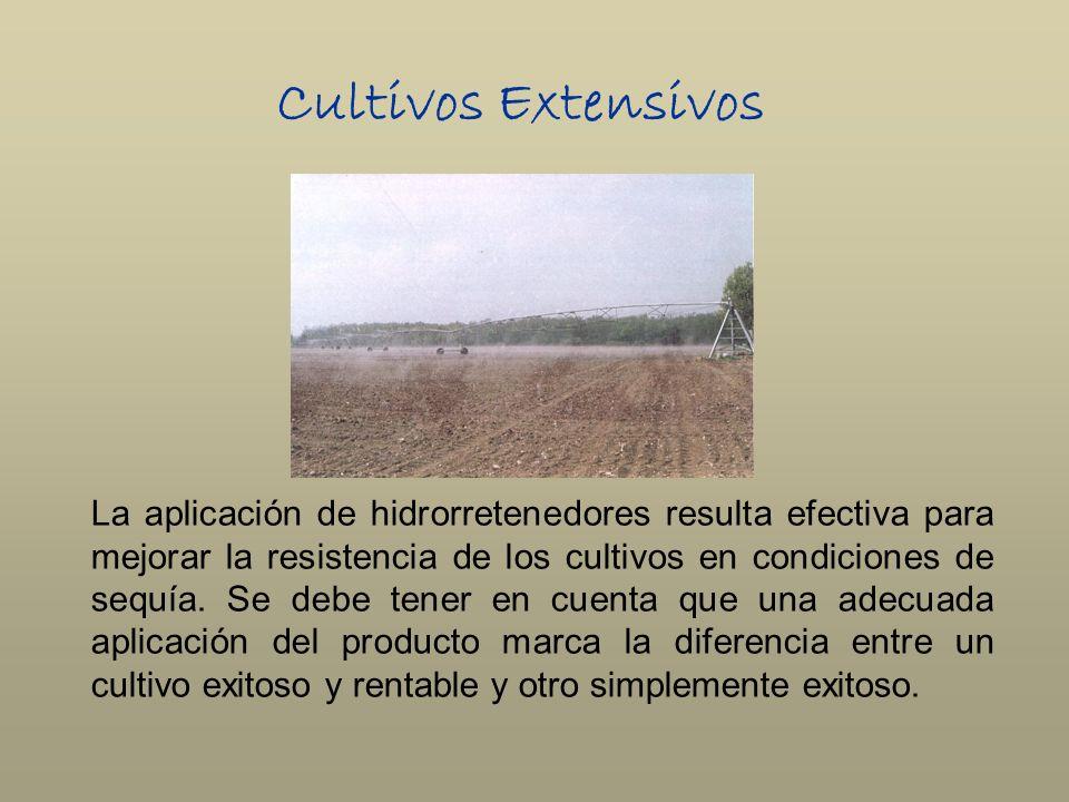 Cultivos Extensivos La aplicación de hidrorretenedores resulta efectiva para mejorar la resistencia de los cultivos en condiciones de sequía. Se debe