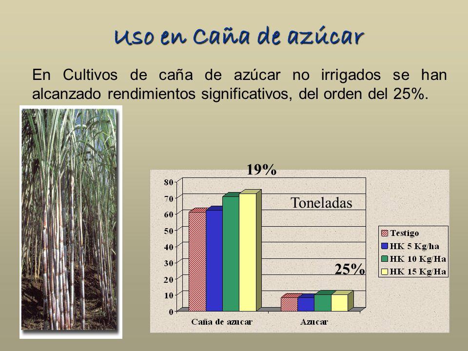 Uso en Caña de azúcar En Cultivos de caña de azúcar no irrigados se han alcanzado rendimientos significativos, del orden del 25%. Toneladas 19% 25%