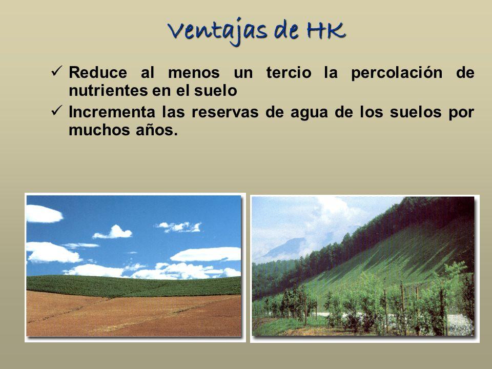 Reduce al menos un tercio la percolación de nutrientes en el suelo Incrementa las reservas de agua de los suelos por muchos años. Ventajas de HK