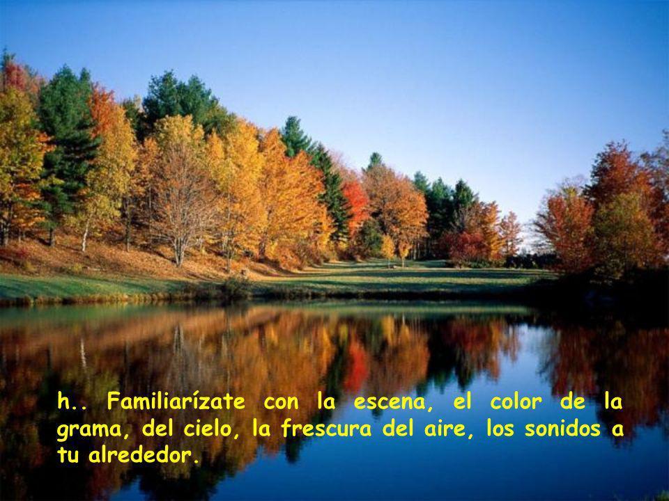 h.. Familiarízate con la escena, el color de la grama, del cielo, la frescura del aire, los sonidos a tu alrededor.