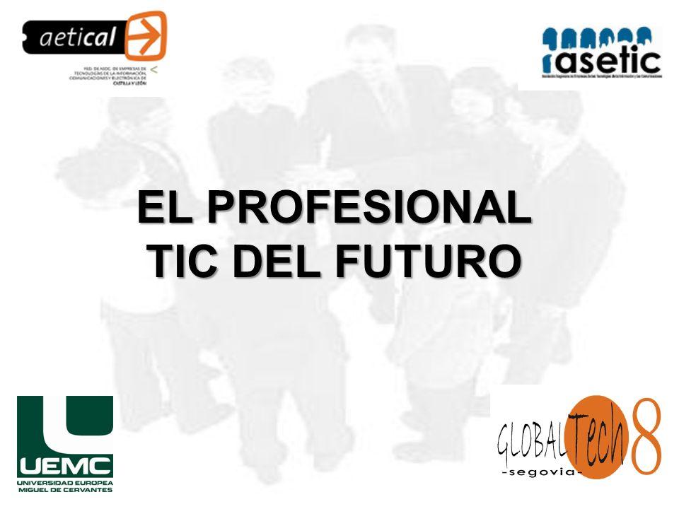EL PROFESIONAL TIC DEL FUTURO