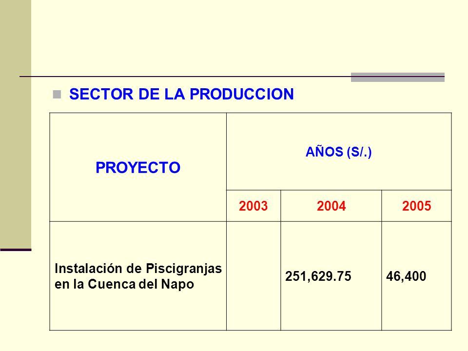 SECTOR DE LA PRODUCCION PROYECTO AÑOS (S/.) 200320042005 Instalación de Piscigranjas en la Cuenca del Napo 251,629.7546,400