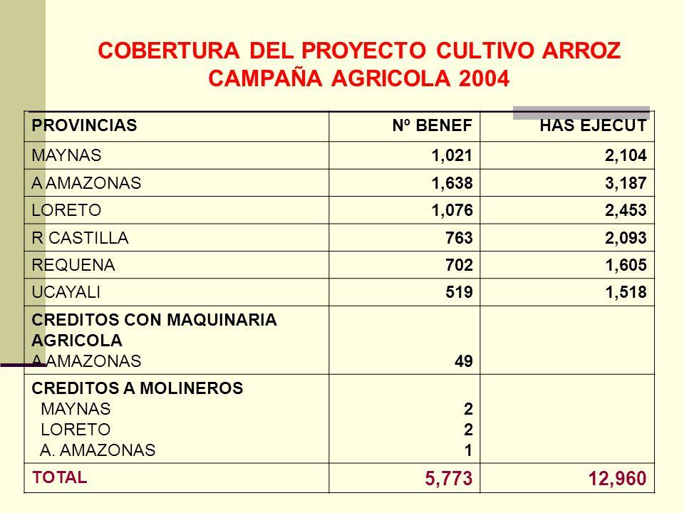 COBERTURA DEL PROYECTO CULTIVO ARROZ CAMPAÑA AGRICOLA 2004 PROVINCIASNº BENEFHAS EJECUT MAYNAS1,0212,104 A AMAZONAS1,6383,187 LORETO1,0762,453 R CASTILLA7632,093 REQUENA7021,605 UCAYALI5191,518 CREDITOS CON MAQUINARIA AGRICOLA A AMAZONAS49 CREDITOS A MOLINEROS MAYNAS LORETO A.