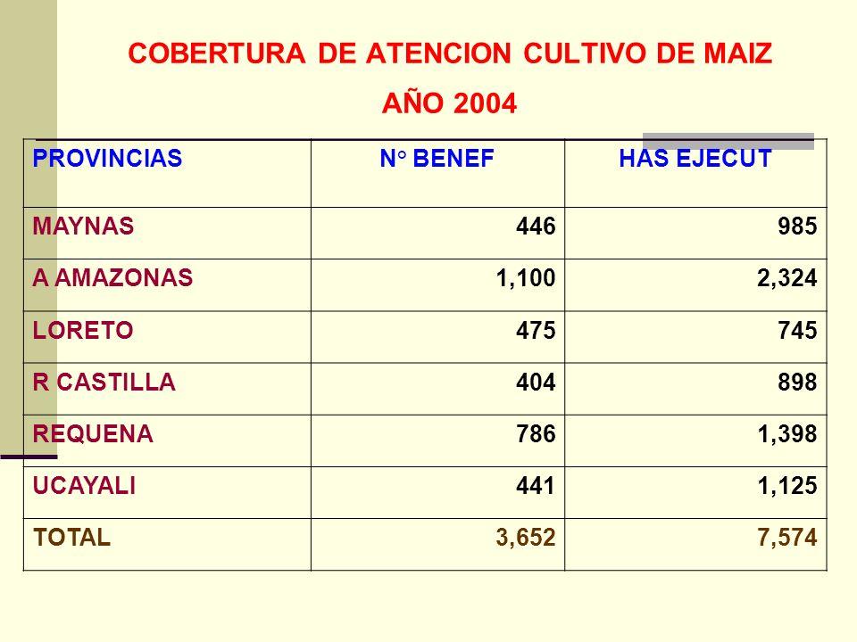 COBERTURA DE ATENCION CULTIVO DE MAIZ AÑO 2004 PROVINCIASN° BENEFHAS EJECUT MAYNAS446985 A AMAZONAS1,1002,324 LORETO475745 R CASTILLA404898 REQUENA7861,398 UCAYALI4411,125 TOTAL3,6527,574