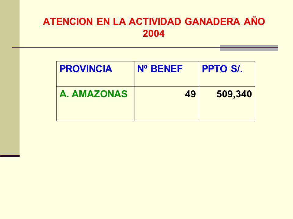 ATENCION EN LA ACTIVIDAD GANADERA AÑO 2004 PROVINCIANº BENEFPPTO S/. A. AMAZONAS49509,340