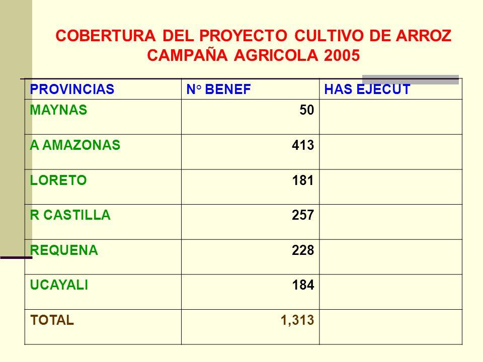 COBERTURA DEL PROYECTO CULTIVO DE ARROZ CAMPAÑA AGRICOLA 2005 PROVINCIASN° BENEFHAS EJECUT MAYNAS50 A AMAZONAS413 LORETO181 R CASTILLA257 REQUENA228 UCAYALI184 TOTAL1,313