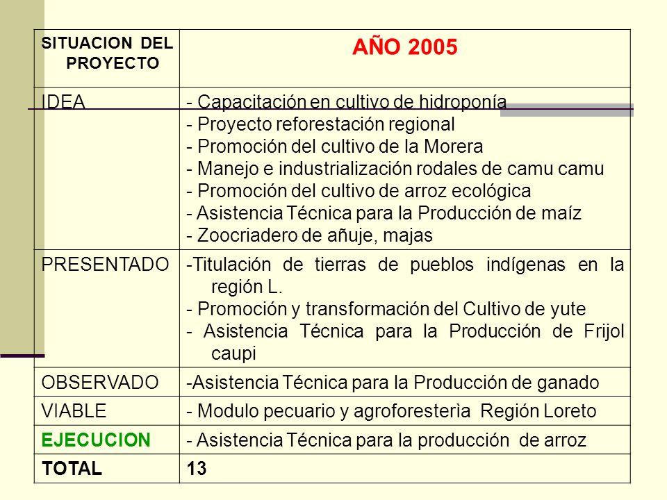 SITUACION DEL PROYECTO AÑO 2005 IDEA- Capacitación en cultivo de hidroponía - Proyecto reforestación regional - Promoción del cultivo de la Morera - M