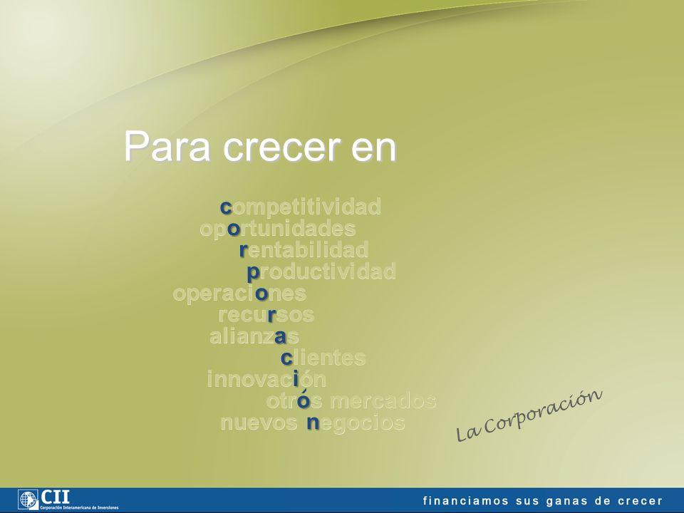 Nuestra definición de PYME para Argentina (en proyectos directos) Activos y Ventas: US$7 millones (pequeña), US$20 millones (mediana) Empleados: 200 pequeña/ 400 mediana (sector primario) 150 pequeña/ 350 mediana (sector industrial) 100 pequeña/ 300 mediana (sector servicios) Financiamiento directo: Monto mínimo aproximado: US$3 millones Plazo aproximado: 3 a 7 años, con hasta 5 años de gracia de capital.