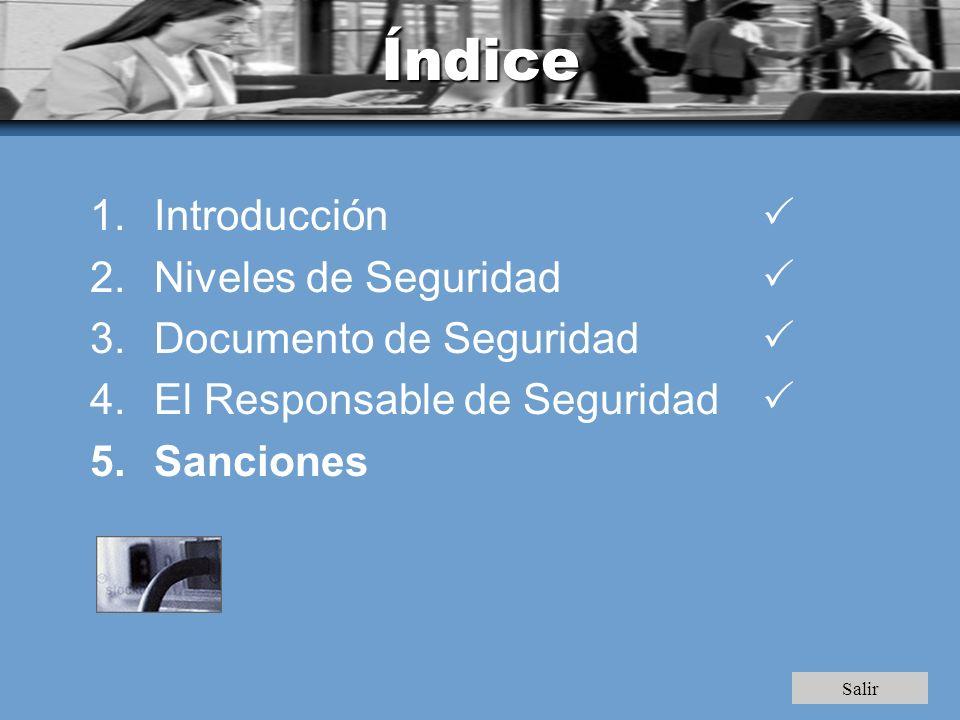 Índice 1.Introducción 2.Niveles de Seguridad 3.Documento de Seguridad 4.El Responsable de Seguridad 5.Sanciones Salir