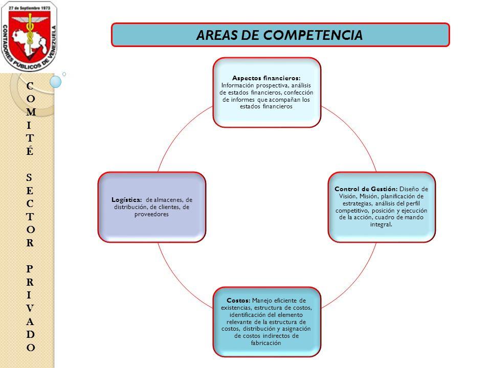 COMITÉ SECTOR PRIVADOCOMITÉ SECTOR PRIVADO Aspectos financieros: Información prospectiva, análisis de estados financieros, confección de informes que
