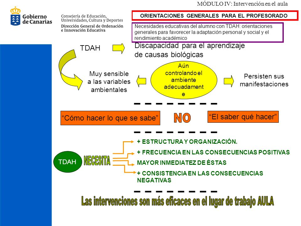 MÓDULO IV: Intervención en el aula ORIENTACIONES GENERALES PARA EL PROFESORADO Necesidades educativas del alumno con TDAH: orientaciones generales par