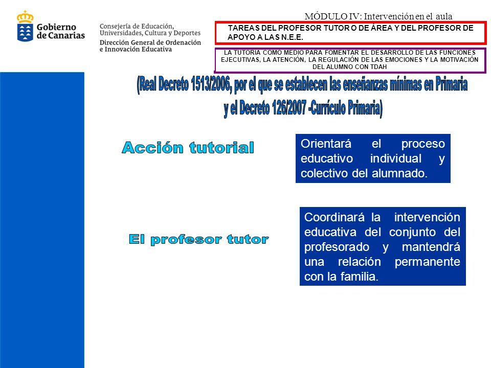 MÓDULO IV: Intervención en el aula TAREAS DEL PROFESOR TUTOR O DE ÁREA Y DEL PROFESOR DE APOYO A LAS N.E.E. Orientará el proceso educativo individual