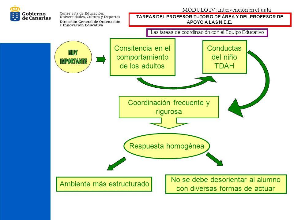 MÓDULO IV: Intervención en el aula TAREAS DEL PROFESOR TUTOR O DE ÁREA Y DEL PROFESOR DE APOYO A LAS N.E.E. Las tareas de coordinación con el Equipo E