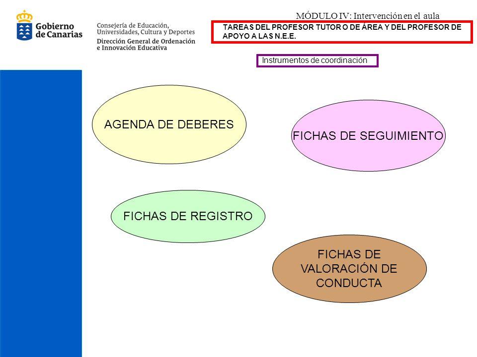 MÓDULO IV: Intervención en el aula TAREAS DEL PROFESOR TUTOR O DE ÁREA Y DEL PROFESOR DE APOYO A LAS N.E.E. Instrumentos de coordinación AGENDA DE DEB