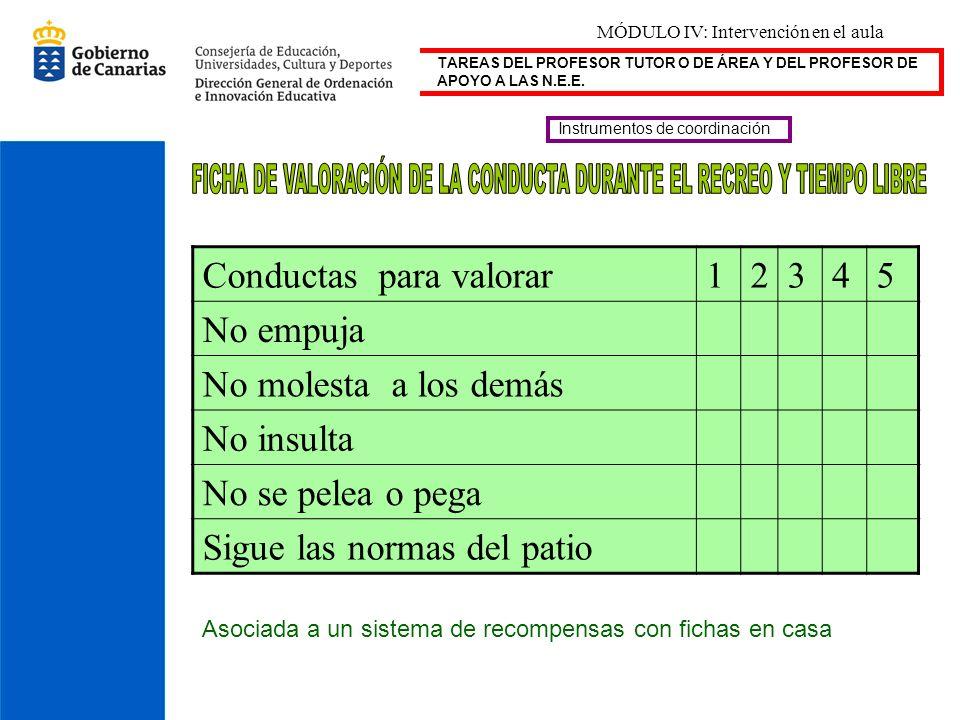 TAREAS DEL PROFESOR TUTOR O DE ÁREA Y DEL PROFESOR DE APOYO A LAS N.E.E. Instrumentos de coordinación Conductas para valorar12345 No empuja No molesta