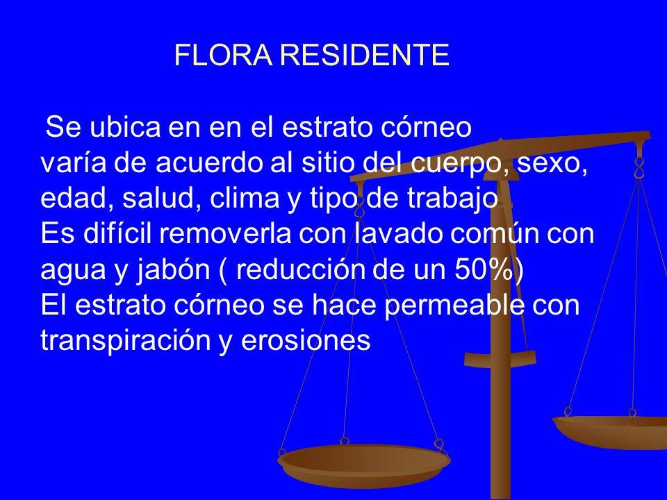 SUPERFICIE DE LA PIEL FLORA RESIDENTEFLORA RESIDENTE FLORA TRANSITORIAFLORA TRANSITORIA FLORA INFECCIOSAFLORA INFECCIOSA