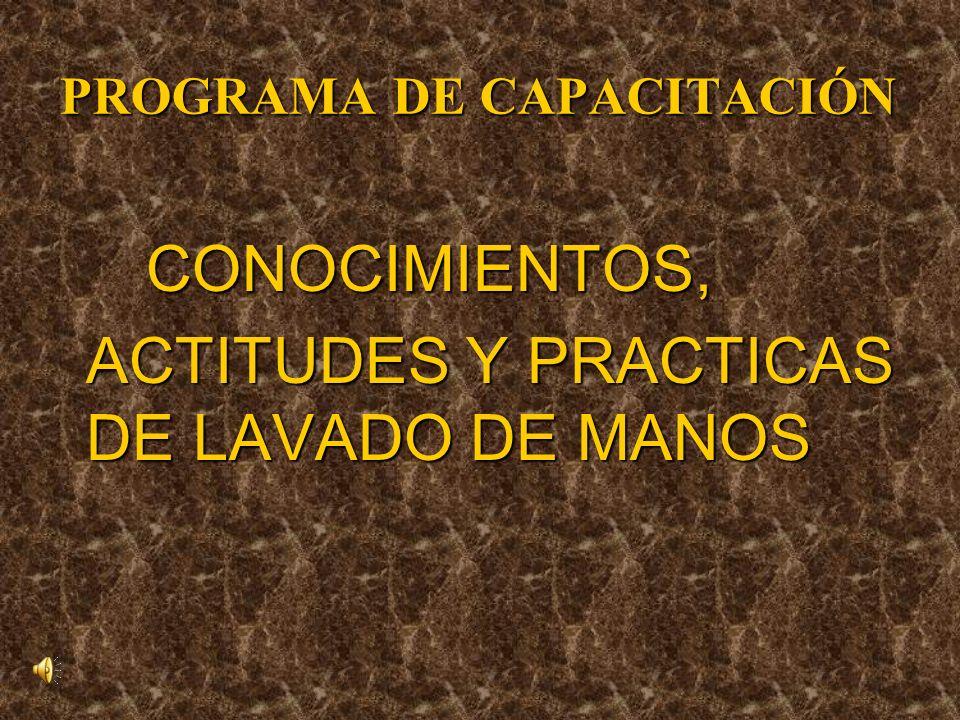 PROGRAMA DE CAPACITACIÓN CONOCIMIENTOS, CONOCIMIENTOS, ACTITUDES Y PRACTICAS DE LAVADO DE MANOS ACTITUDES Y PRACTICAS DE LAVADO DE MANOS