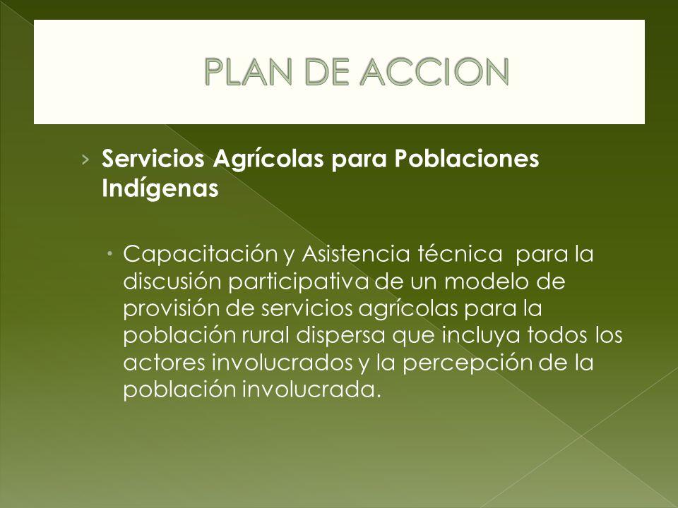 Servicios Agrícolas para Poblaciones Indígenas Capacitación y Asistencia técnica para la discusión participativa de un modelo de provisión de servicio
