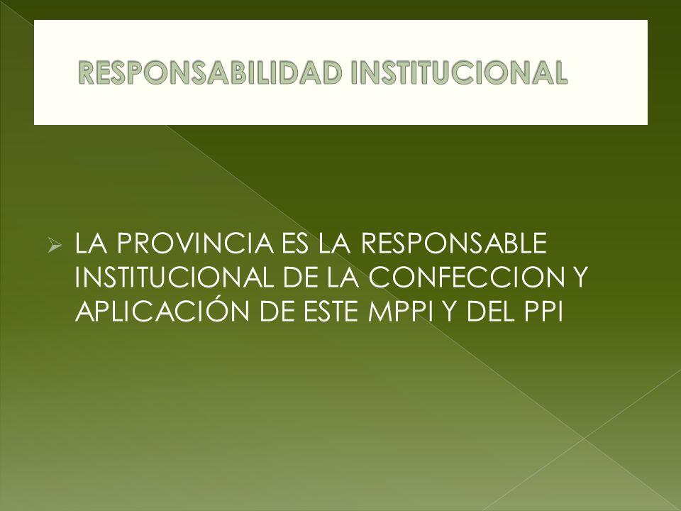 LA PROVINCIA ES LA RESPONSABLE INSTITUCIONAL DE LA CONFECCION Y APLICACIÓN DE ESTE MPPI Y DEL PPI