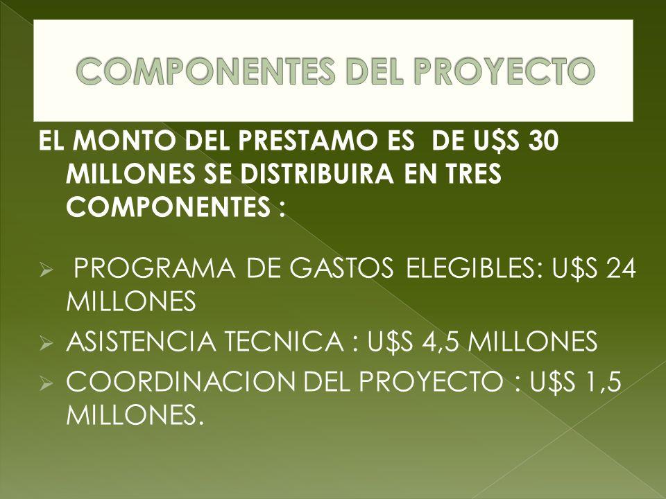 EL MONTO DEL PRESTAMO ES DE U$S 30 MILLONES SE DISTRIBUIRA EN TRES COMPONENTES : PROGRAMA DE GASTOS ELEGIBLES: U$S 24 MILLONES ASISTENCIA TECNICA : U$S 4,5 MILLONES COORDINACION DEL PROYECTO : U$S 1,5 MILLONES.