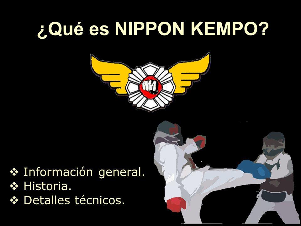 ¿Qué es NIPPON KEMPO? Información general. Historia. Detalles técnicos.