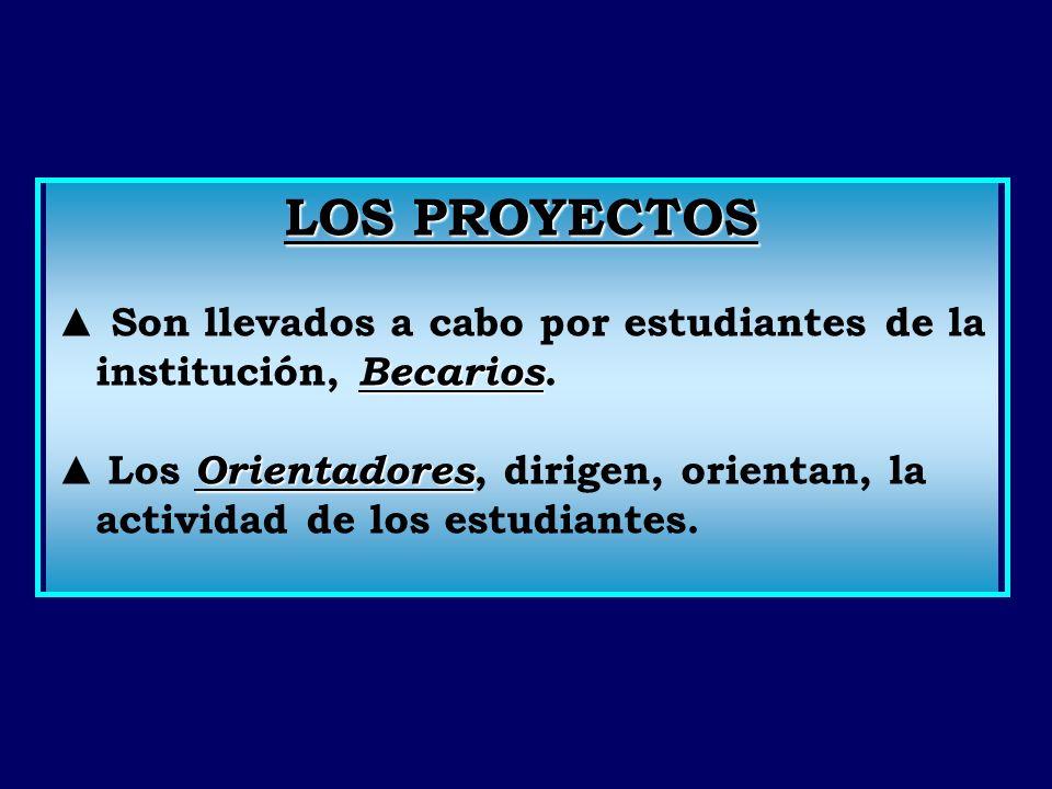 Proyectos Aprobados (2007-2008) - Formación del grupo de soporte técnico para el Laboratorio de Acústica Ultrasonora.