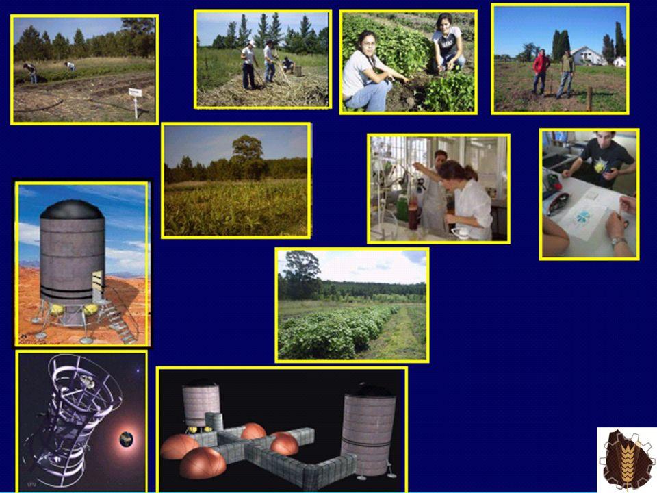 NOVEDADES La Unidad de Innovaci ó n Tecnol ó gica, particip ó en la II Jornada Cient í fica en Educaci ó n Profesional y Tecnol ó gica (16-21 de Marzo, 2009) MERCOSUR, en Caracas-Venezuela.