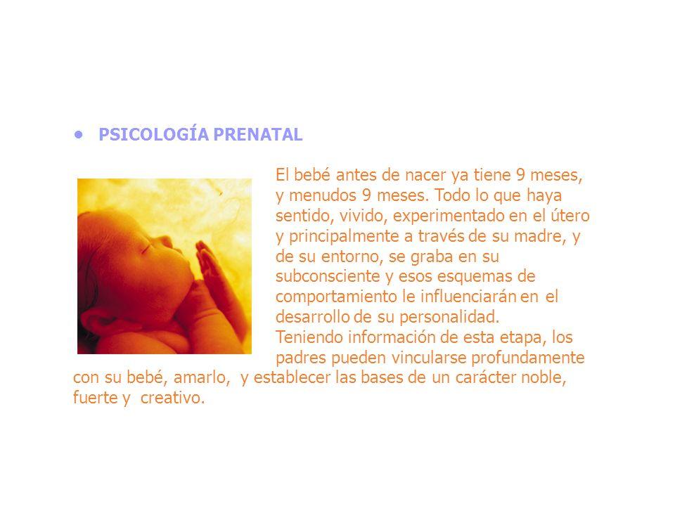 Durante el periodo prenatal, el bebé siente, escucha, se comunica y construye las primeras bases de su salud, de su equilibrio psíquico, de su inteligencia y de su visión del mundo.