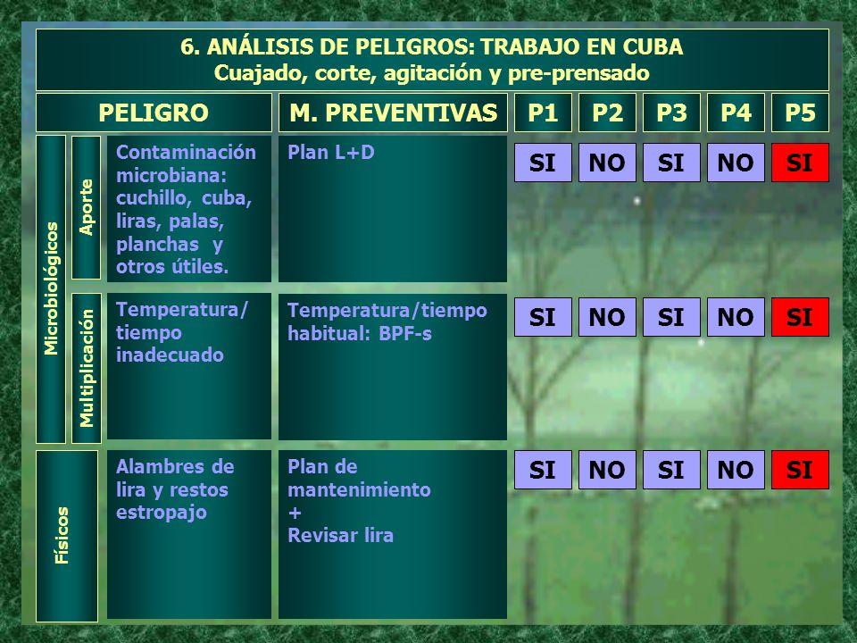 6. ANÁLISIS DE PELIGROS: TRABAJO EN CUBA Cuajado, corte, agitación y pre-prensado Microbiológicos Aporte Contaminación microbiana: cuchillo, cuba, lir