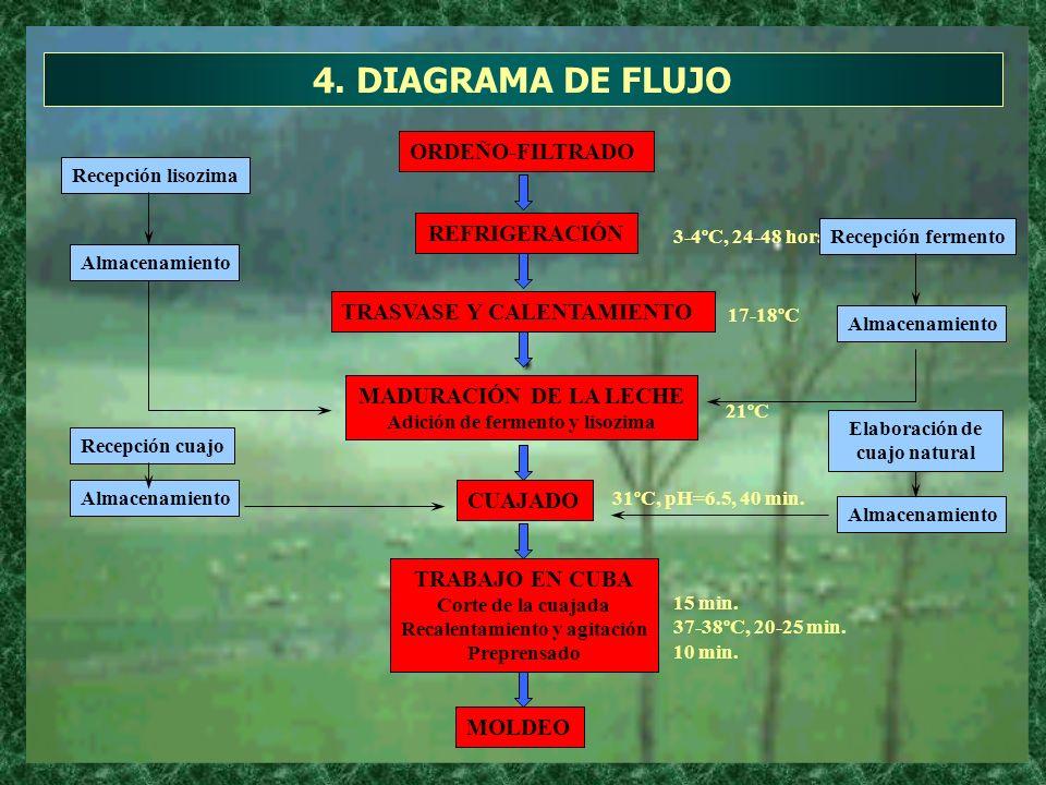 4. DIAGRAMA DE FLUJO CUAJADO TRABAJO EN CUBA Corte de la cuajada Recalentamiento y agitación Preprensado MOLDEO ORDEÑO-FILTRADO REFRIGERACIÓN TRASVASE
