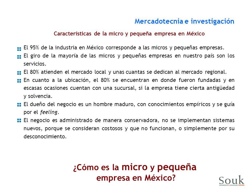 Características de la micro y pequeña empresa en México El 95% de la industria en México corresponde a las micros y pequeñas empresas. El giro de la m