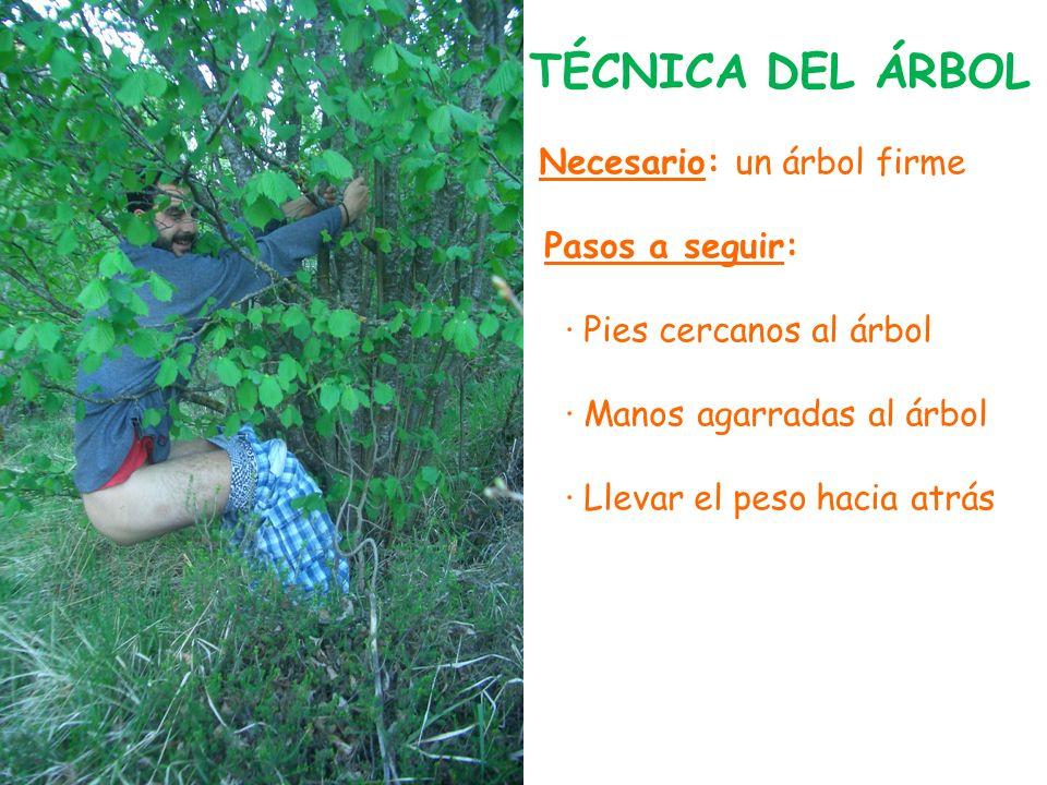 TÉCNICA DEL ÁRBOL Necesario: un árbol firme Pasos a seguir: · Pies cercanos al árbol · Manos agarradas al árbol · Llevar el peso hacia atrás