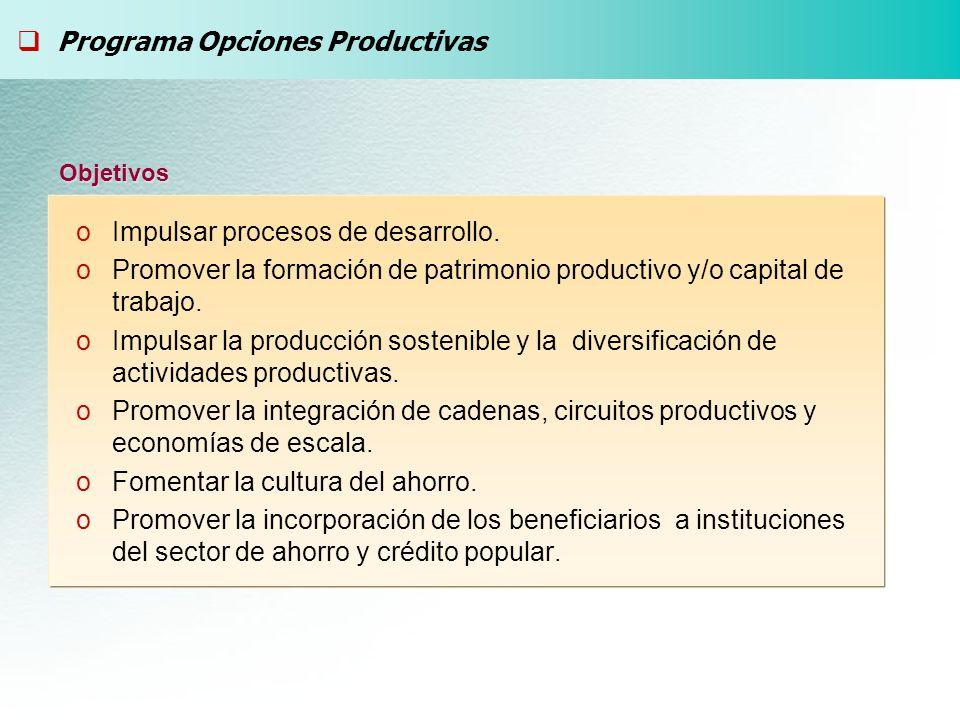 oImpulsar procesos de desarrollo. oPromover la formación de patrimonio productivo y/o capital de trabajo. oImpulsar la producción sostenible y la dive