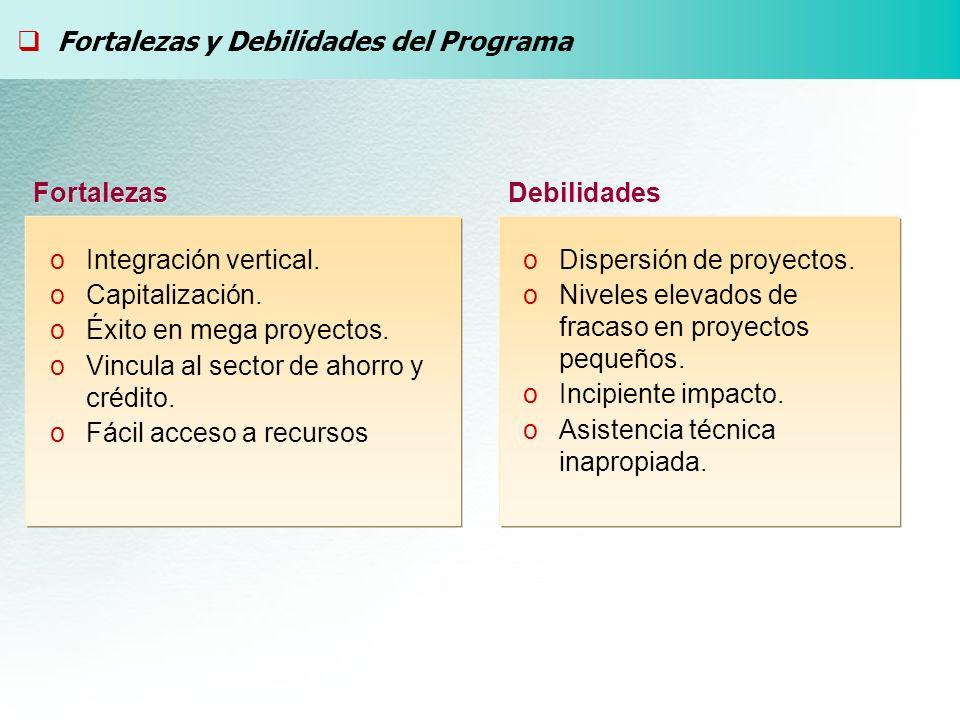 Fortalezas y Debilidades del Programa Fortalezas Debilidades oDispersión de proyectos. oNiveles elevados de fracaso en proyectos pequeños. oIncipiente