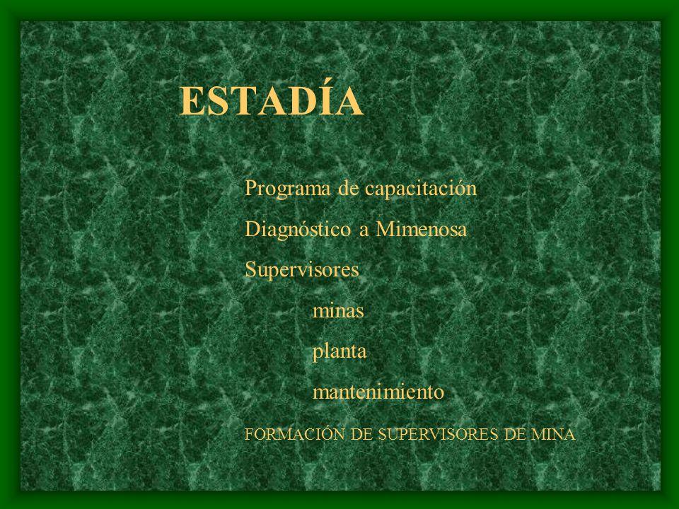VISITAS A INDUSTRIAS PRACTICAS PROFESIONALES ESTADIAS SERVICIO SOCIAL SERVICIOS VARIOS VINCULACIÓN