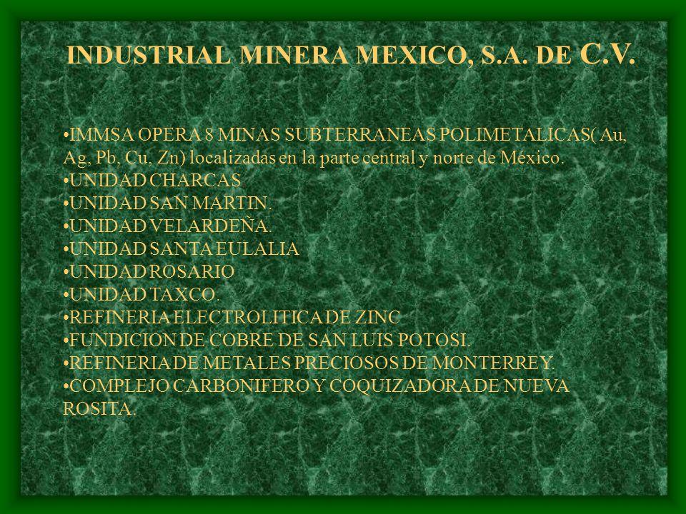 MEXICANA DE COBRE, S.A. DEC.V. MEXICANA DE CANANEA, S.A. DE C.V. INDUSTRIAL MINERA MEXICO, S.A. DE C.V. MINERA MEXICO INTERNANCIONAL, INC. (N.Y.) FERR