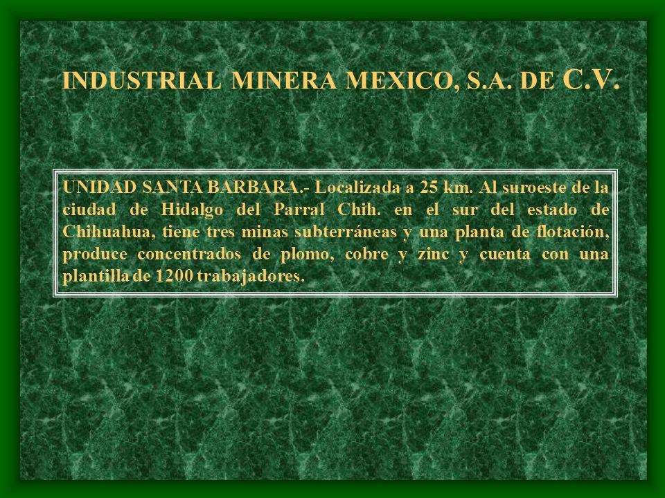 INDUSTRIAL MINERA MEXICO, S.A. DE C.V. IMMSA OPERA 8 MINAS SUBTERRANEAS POLIMETALICAS( Au, Ag, Pb, Cu, Zn) localizadas en la parte central y norte de