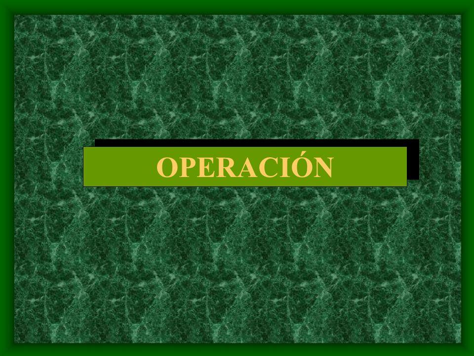 Autorización Organización específica IMPLEMENTACIÓN: